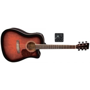 GitaraVGS_RT10CE_VB