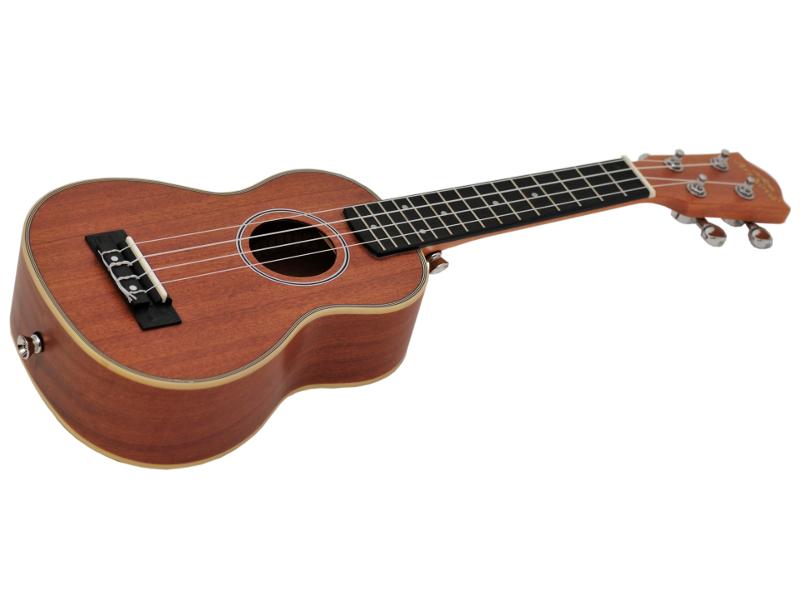 ukulelean100s_nt