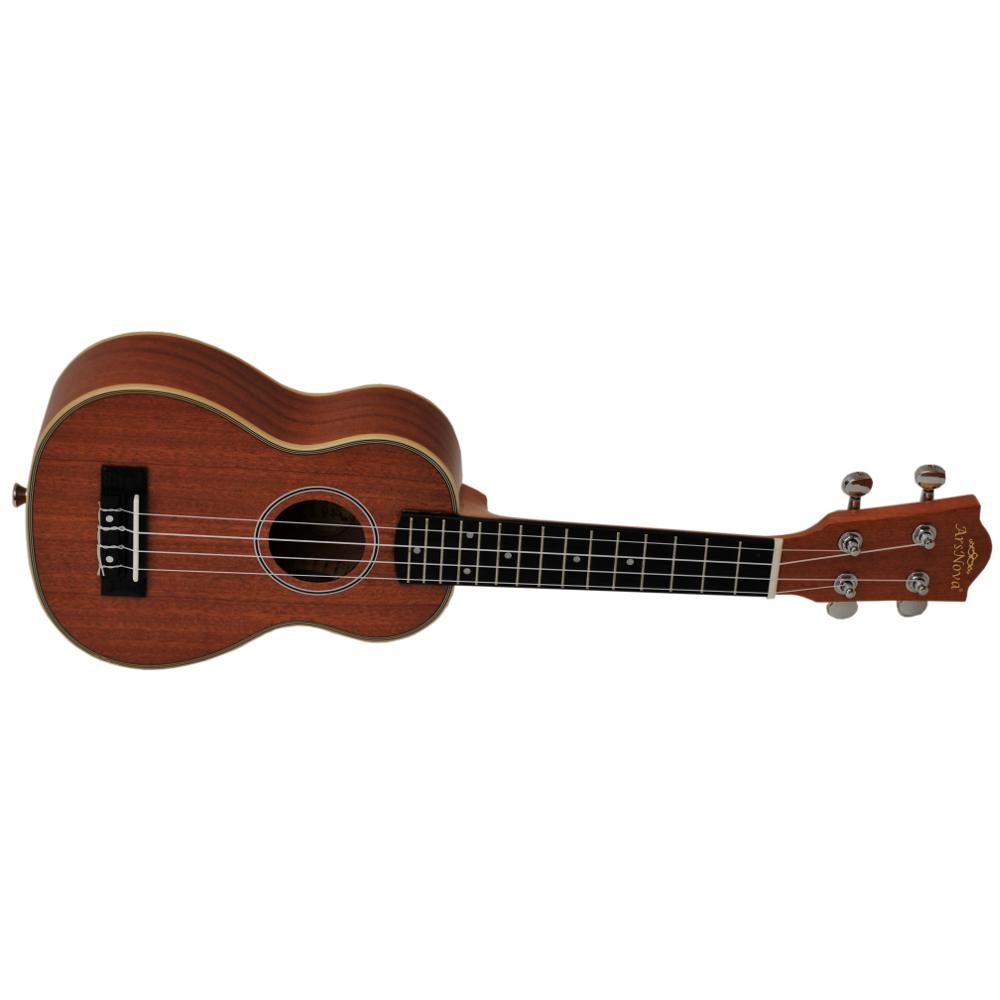 ukulelean100s_nt6